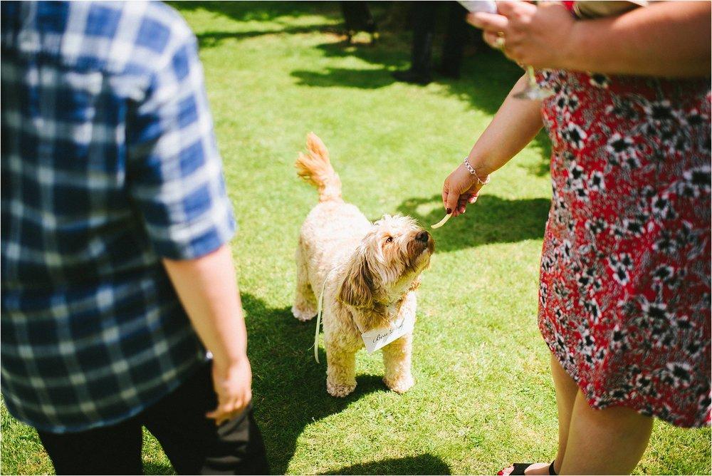 Cotswolds Wedding Photographer_0095.jpg