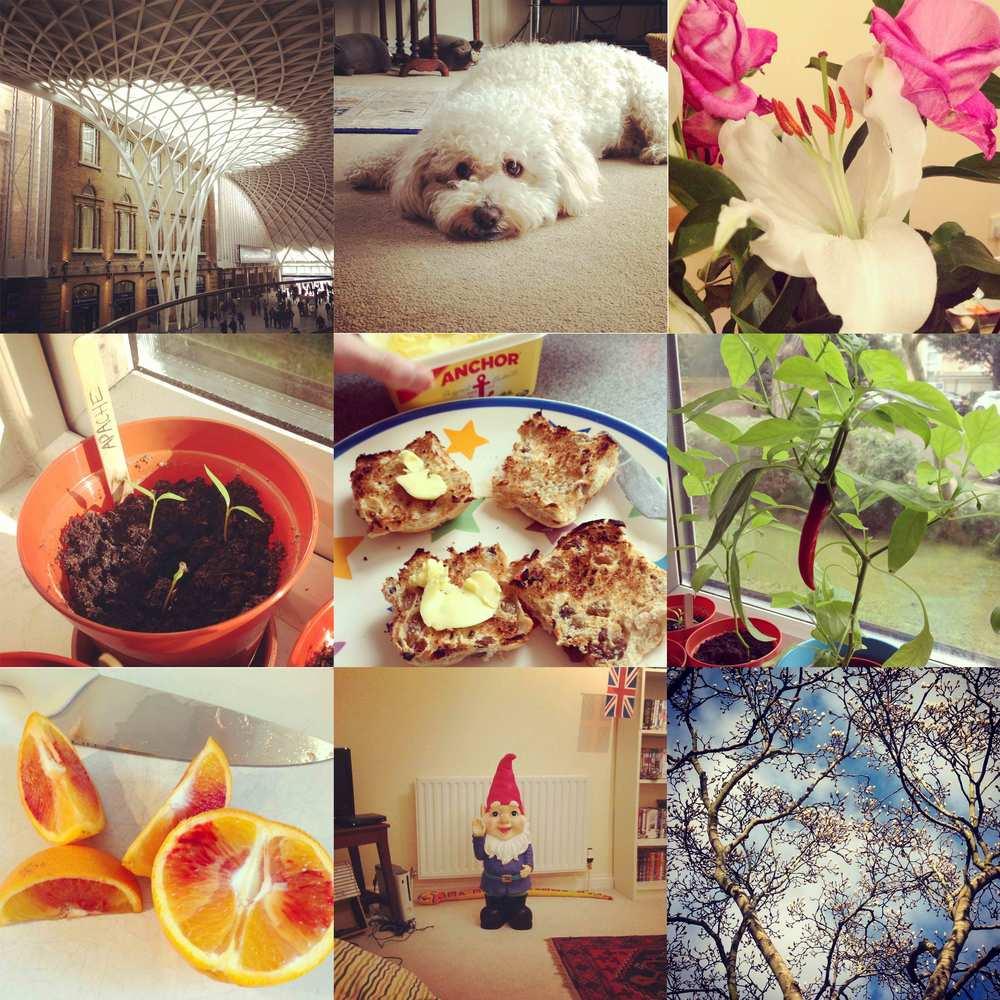 march-instagram