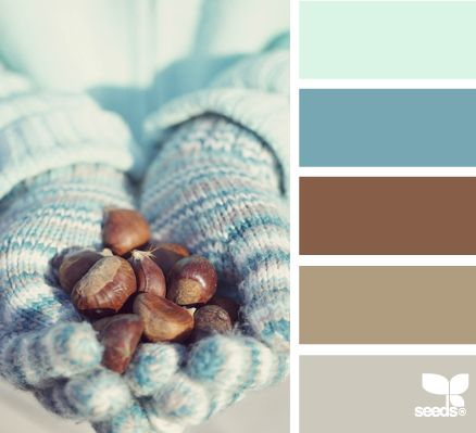 Winter Hues from Design Seeds