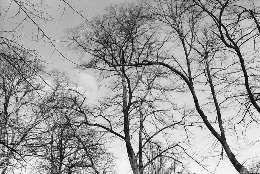 Filmphotofriday