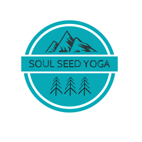 Soul Seed Journeys