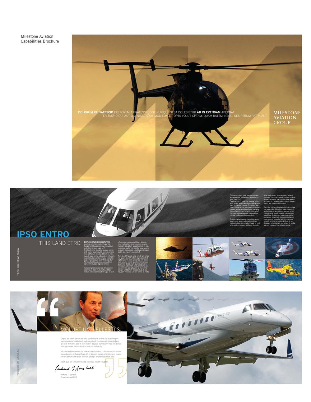 Milestone Aviation.jpg