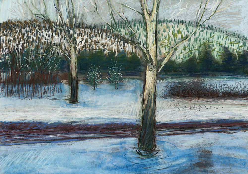 Winter Cold  18 x 23