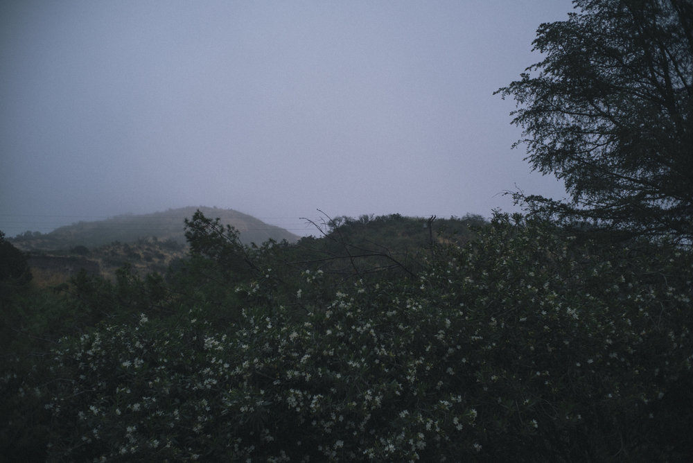 thehills2.jpg