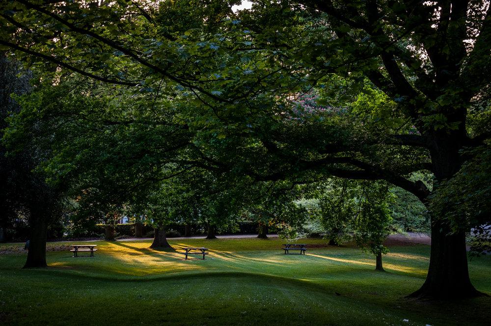 Hollycroft Park, 2014