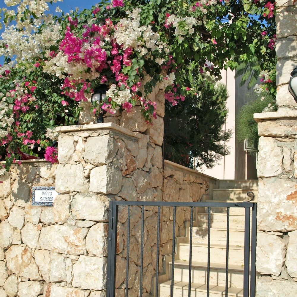 villa gate.jpg