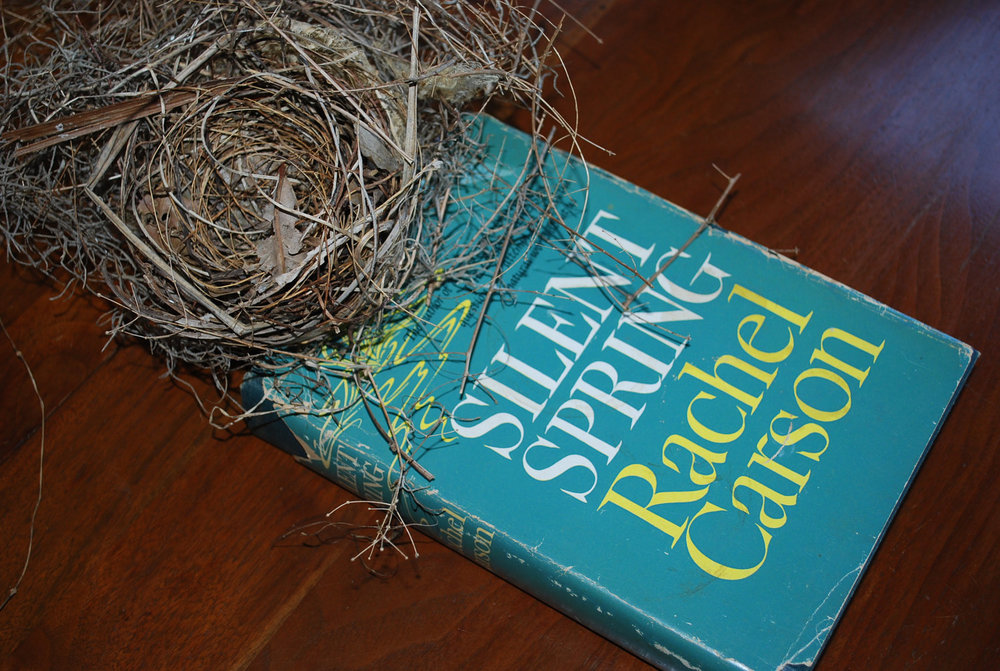Silent-Spring-book-cover1.jpg