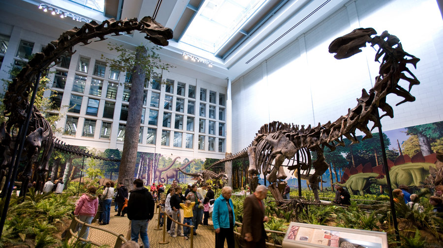 The Carnegie Museums hosted the ICOM Conference on Natural History.
