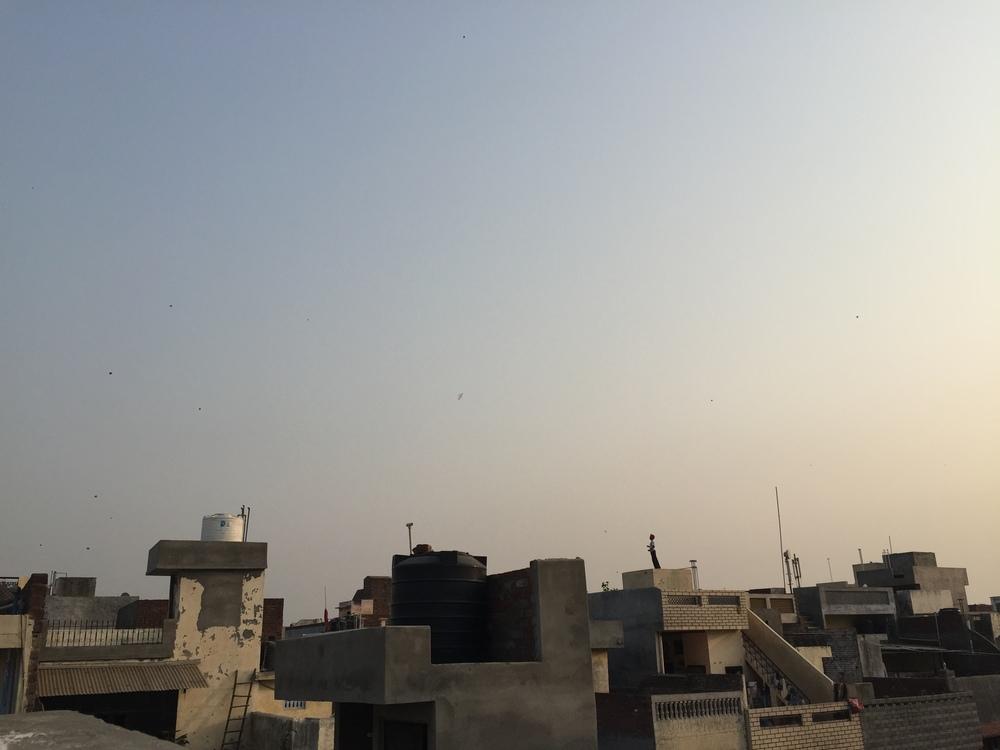More kites.