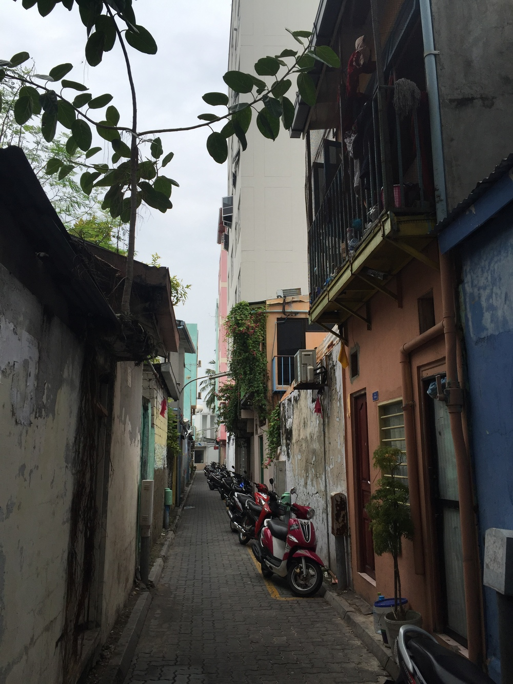 A typical street in the capital of Maldives, Male'