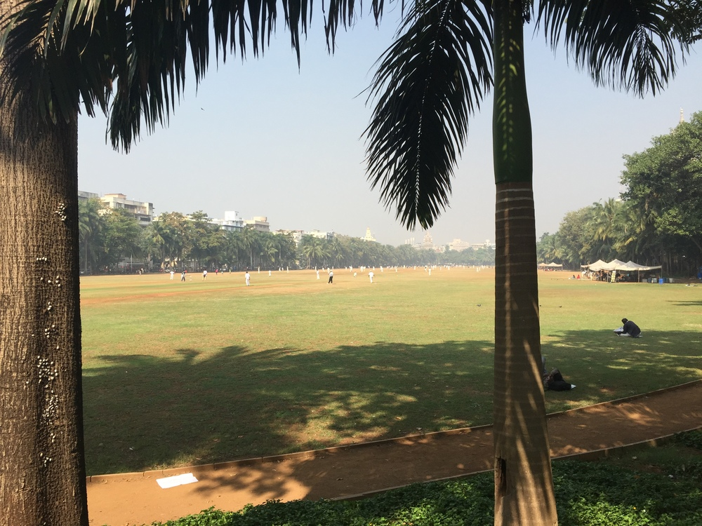 There is a big ol' cricket pitch in the middle of Mumbai. Everyone was playing when I was there.