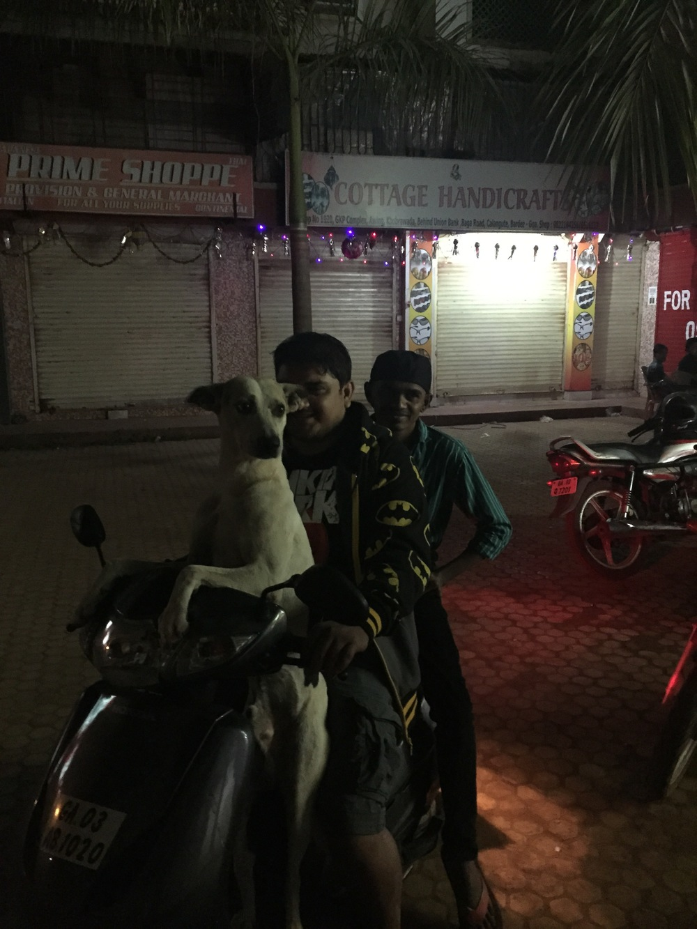 My friend has a street dog that follows him everywhere and insists on riding with him so that he can more easily follow him. During the day while the guy works at a studio, the dog sits on the seat to wait for him.