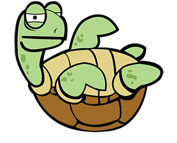 Awkward Turtle.png