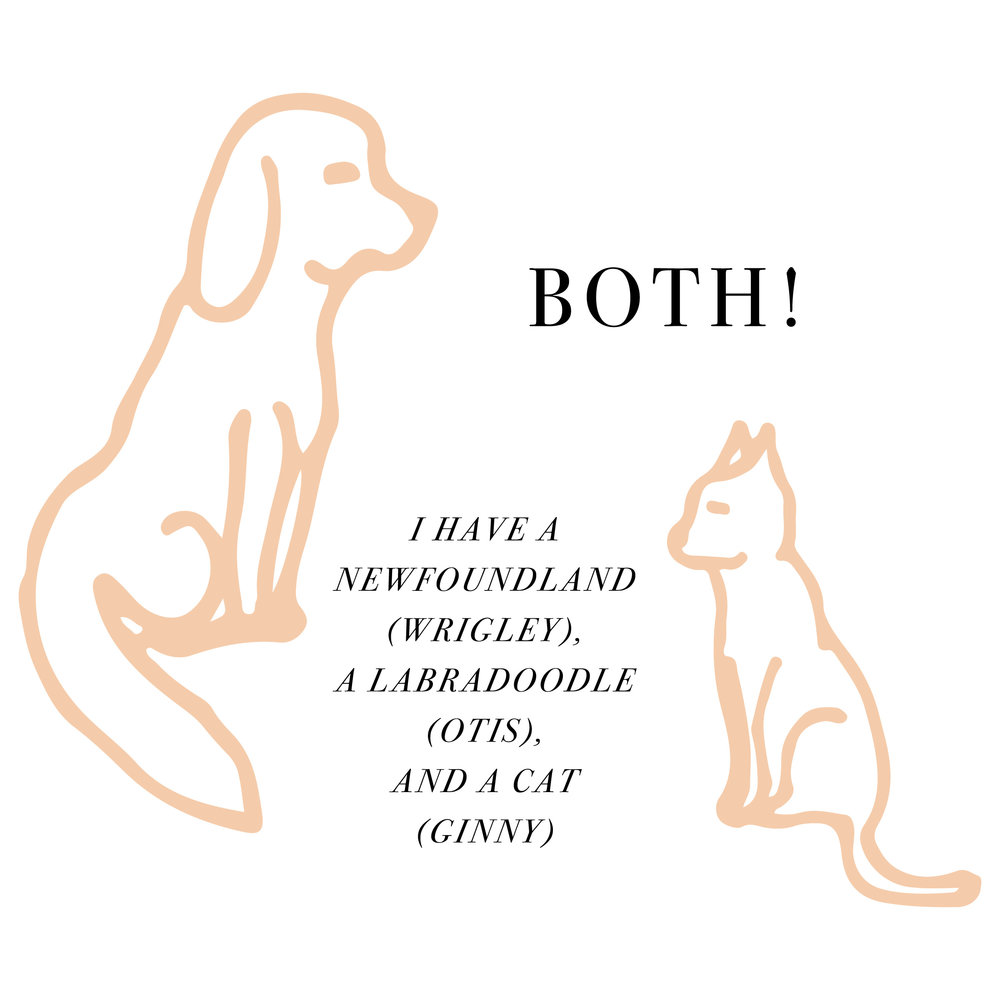 Dogs or Cats - Answer2-01.jpg
