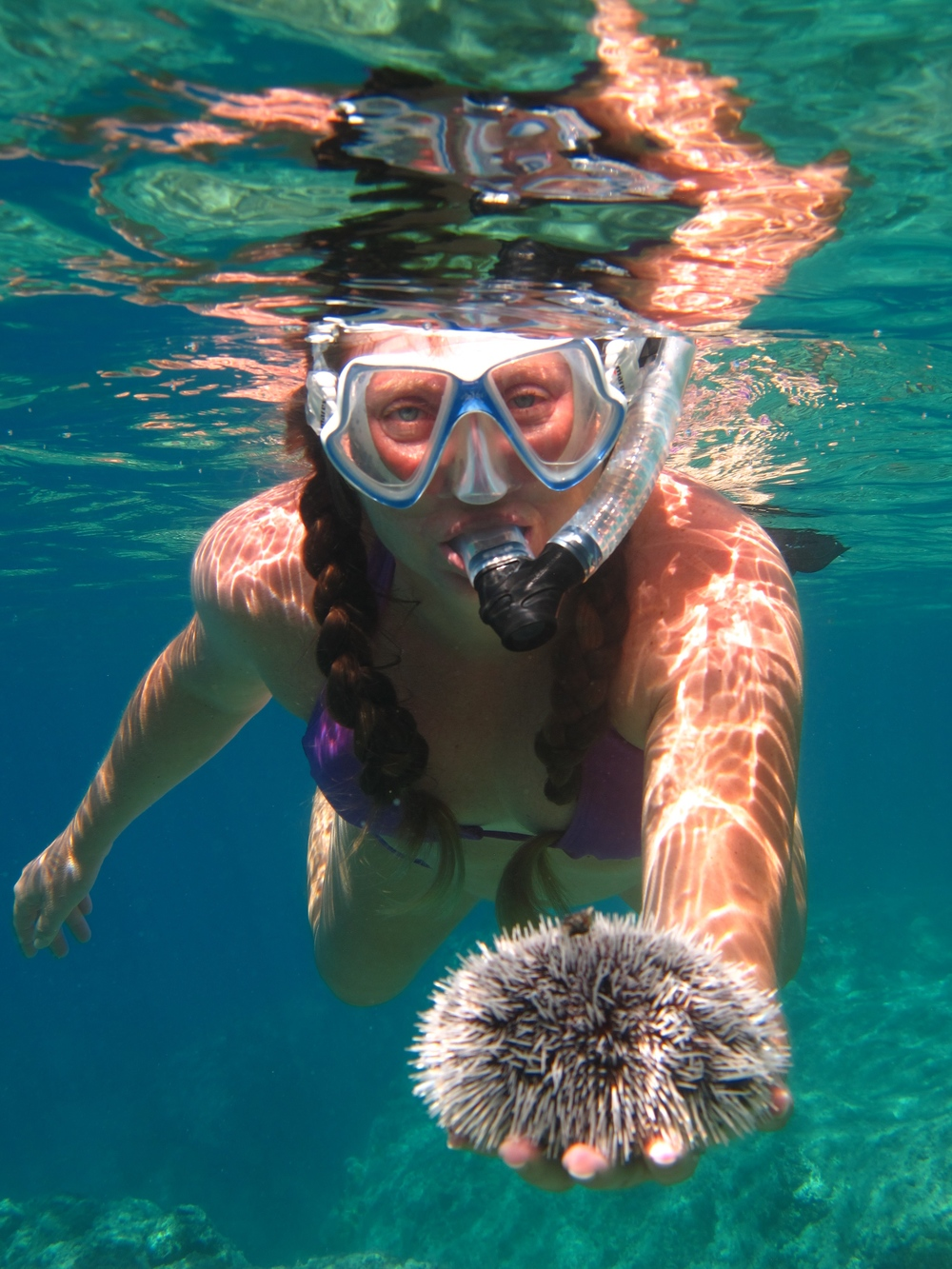 Snorkeling is just as much fun as diving.