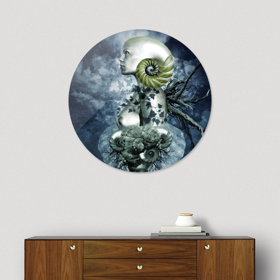 Natura Disc.jpg