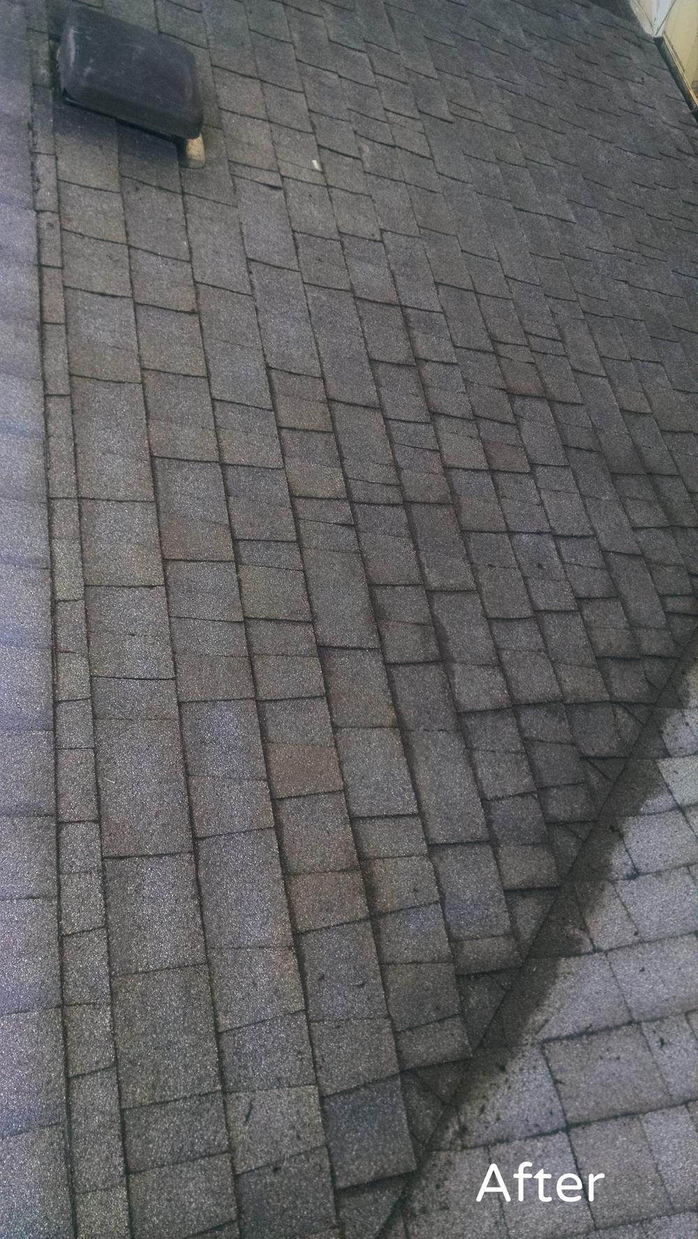 Roof Cleaning Portland.jpg