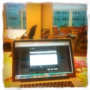 office_view.jpg