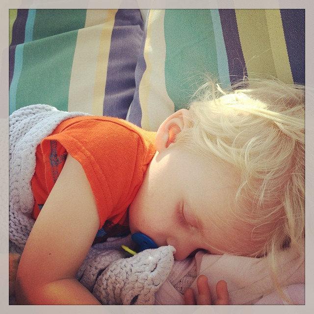 North_Captiva_Hudson_Sleeping.jpg