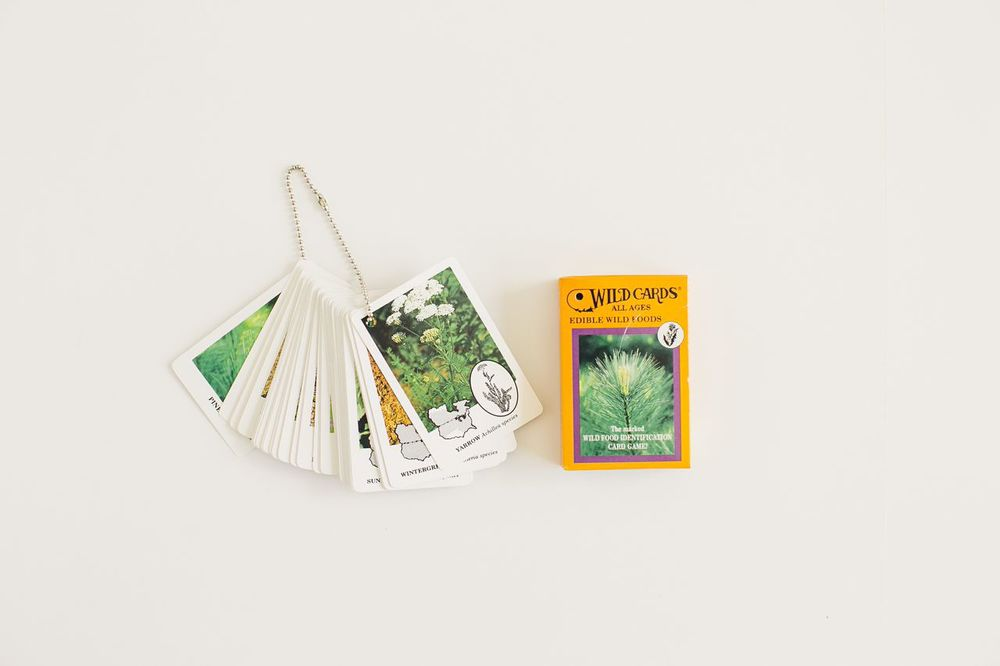 Now that we've got the fire sorted out, let's think about food.4 Plants are probably the easiest food to procure in the wilderness, mostly because they don't move at 30 mph like a rabbit. And this deck of cards featuring edible plants makes the job even easier. The cards feature the greatest hits of foraging—the low-hanging fruit, if you will—like mint, nettles, dandelion, saguaro, and  blackberries.