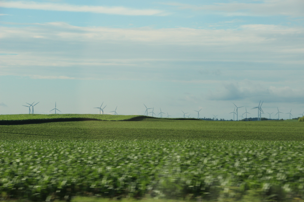 lots of windmill farms at this point of the trip.