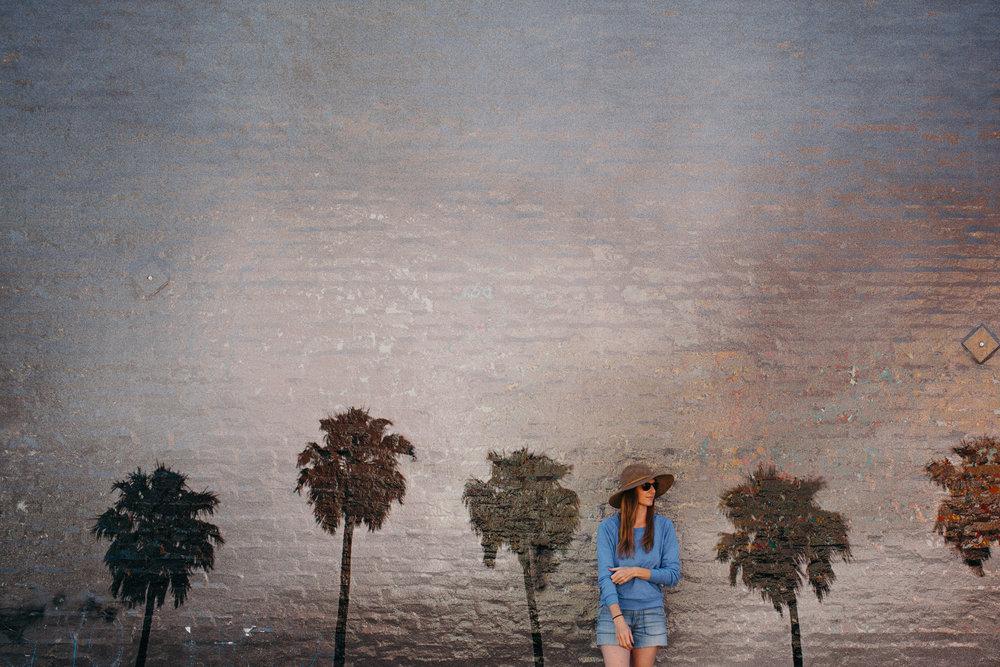 Palm Tree Mural Street Art Abbot Kinney Venice Beach California