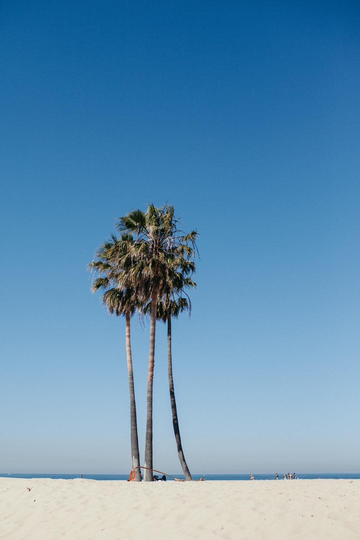 Santa Monica Muscle Beach