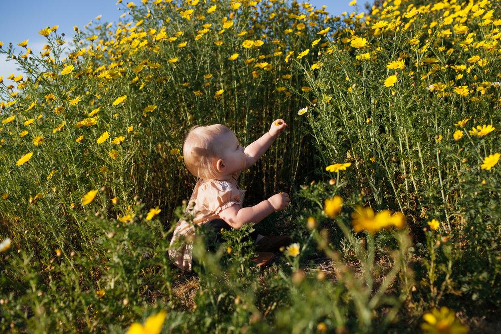 Delighting in the super bloom.