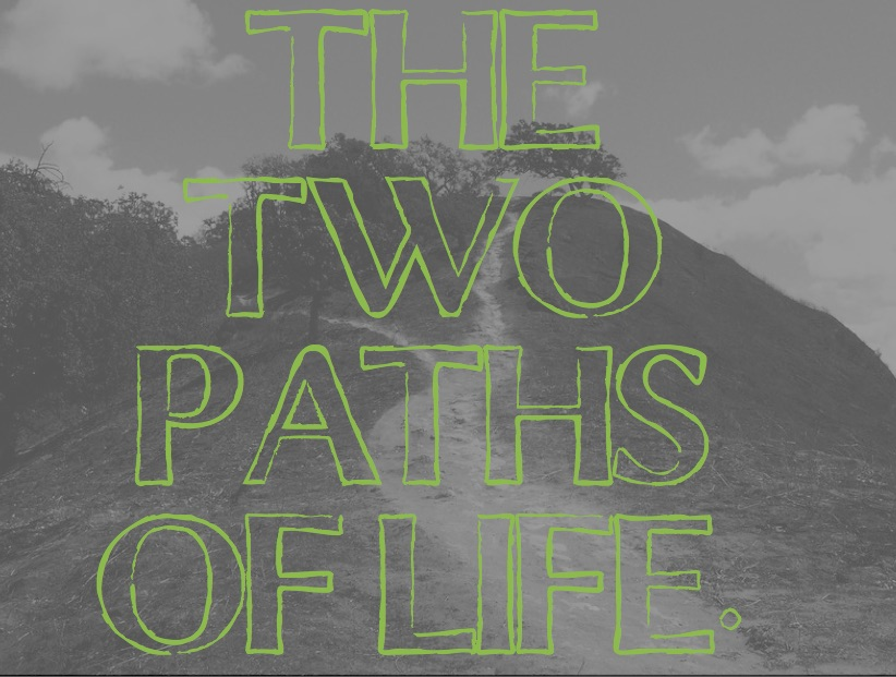 TWO PATHS OF LIFE