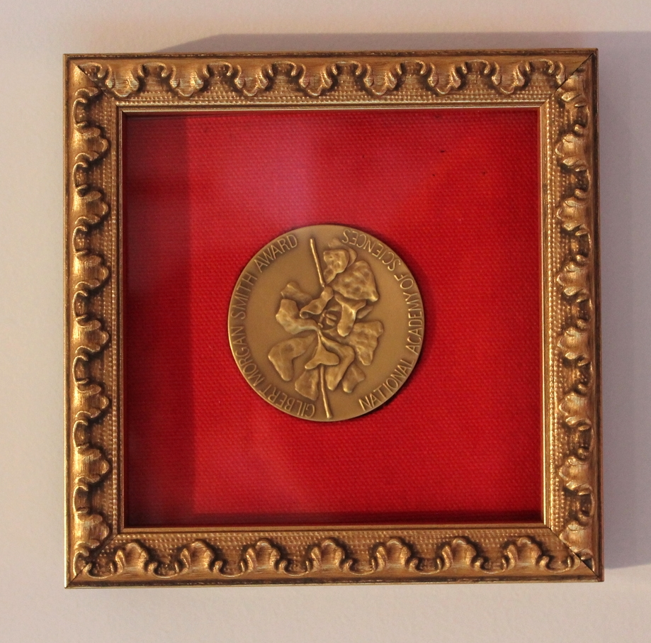 This medal is displayed in a shallow, silk-lined shadowbox