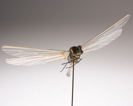 museum_insectovothopter_dragonfly_operational_036.jpg