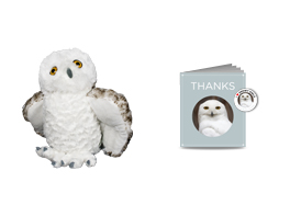 Gifts for Tree-Hugging Kiddos - Sierra Club Adopt a Snowy Owl