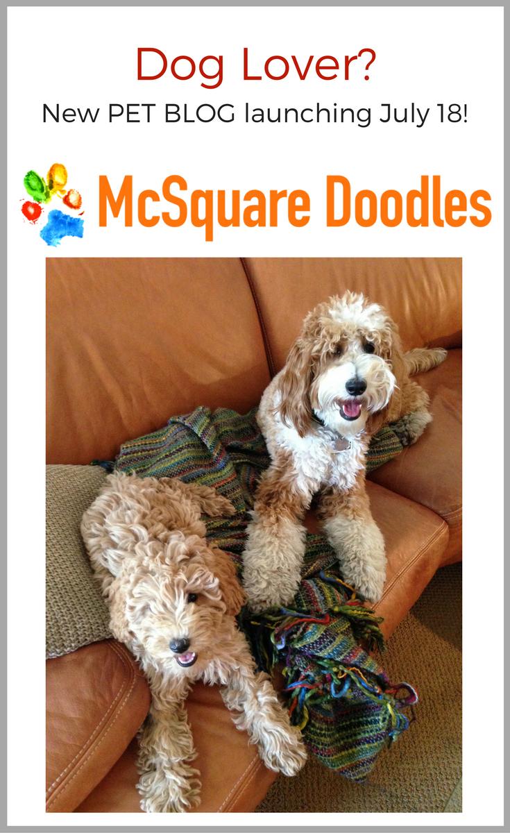 McSquare Doodles Promo