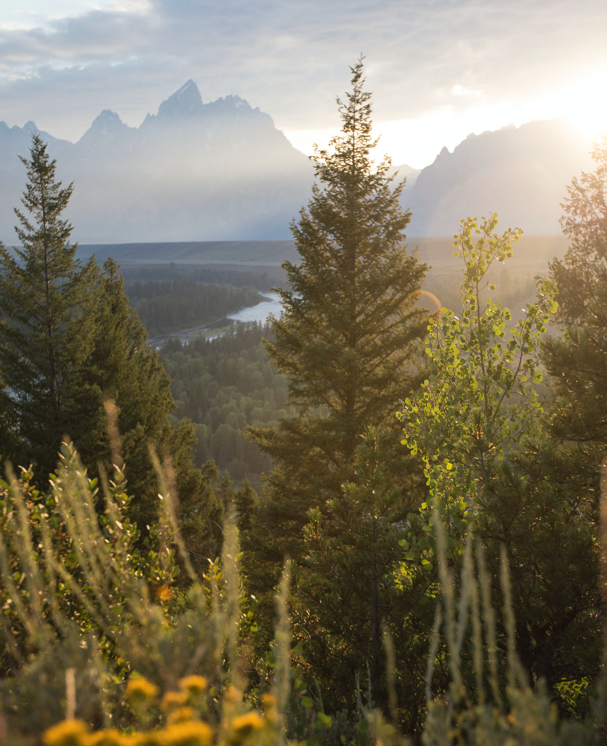 Grand Teton National Park, Snake River Overlook