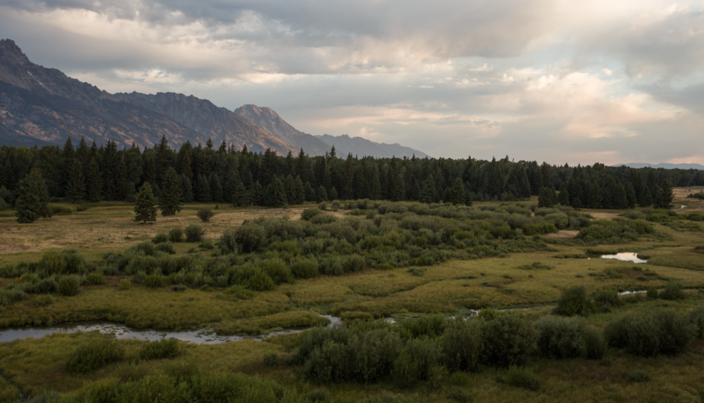 Grand Teton National Park, Hendricks Pond Overlook