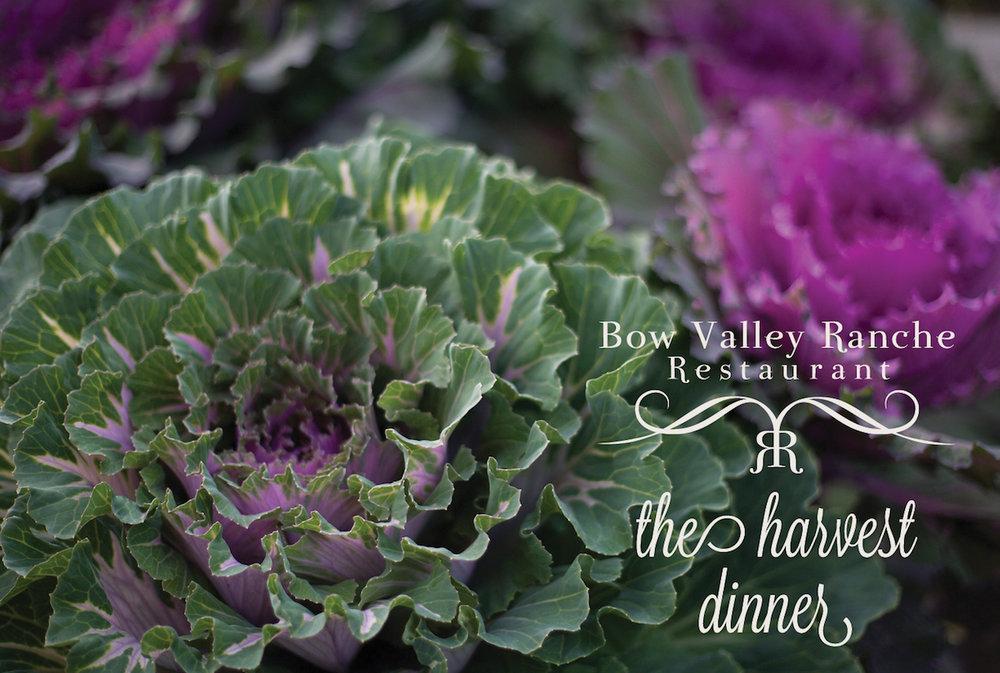 Harvest Dinner_horizontal.jpg