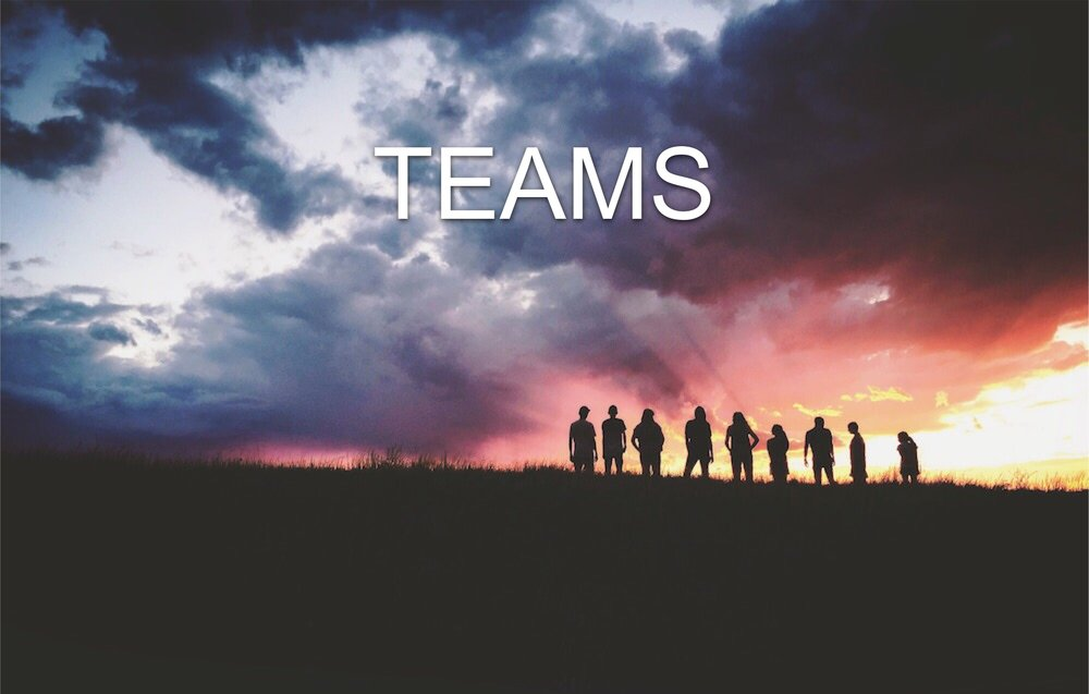 Team Gallery Pic.jpg