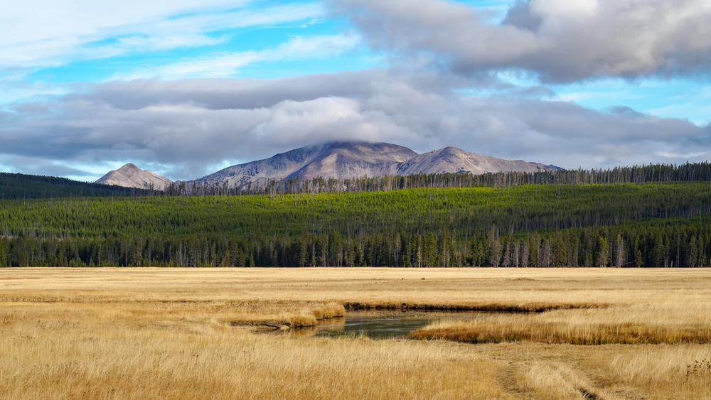 Yellowstone2-1.jpg