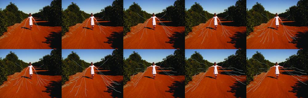 Contraption Molecular, 2010, animation stills