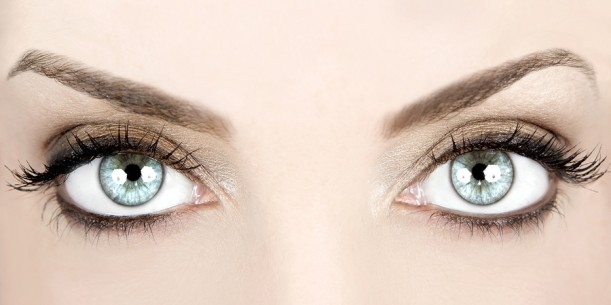 brows4.jpg