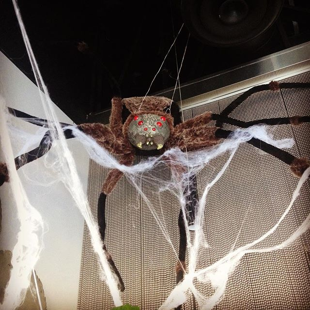 Happy Halloween! from our little pet #kingshabushabu #halloween