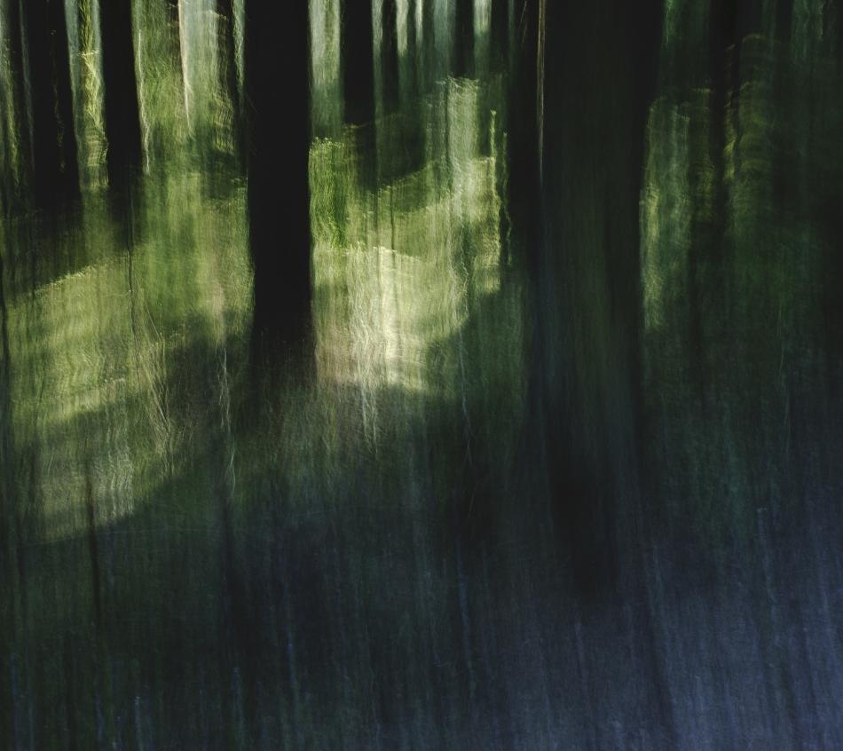 Spirits Path (2011)