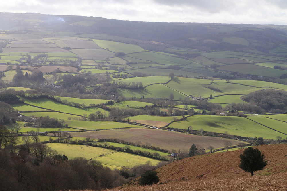 View from the Quantocks