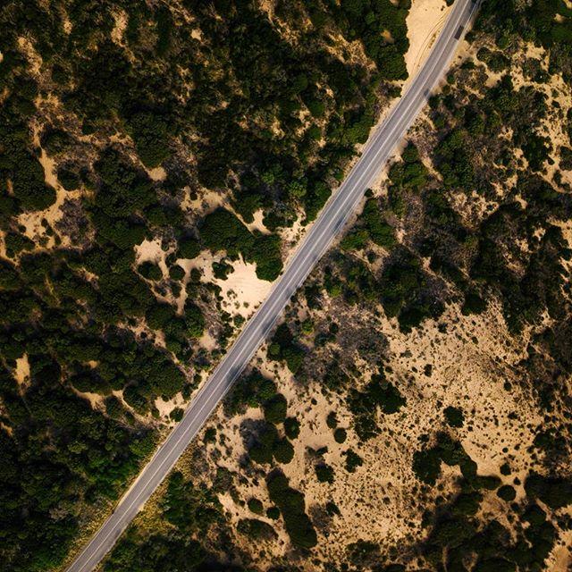 Desert roads 🌞
