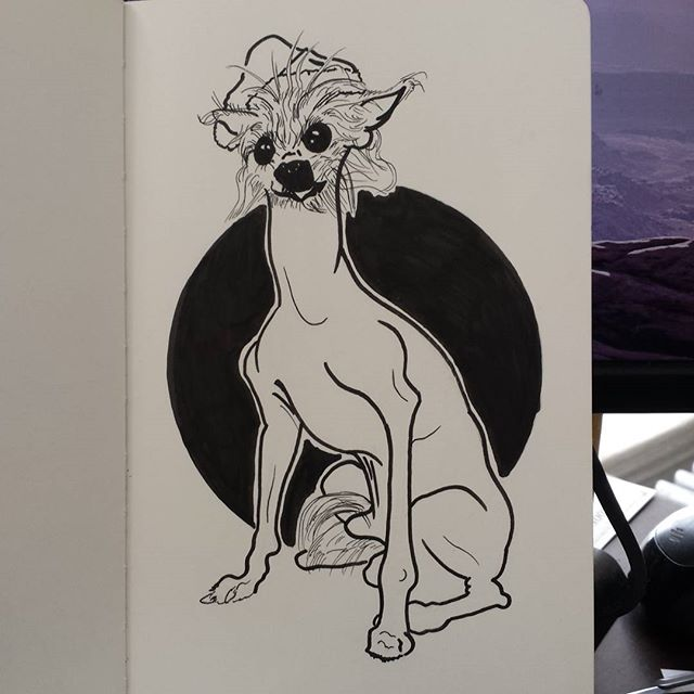 Ugly Christmas dog! #doge #merrychristmas #dogsinhats #uglychristmasdog #dog #drawing #art #instagood #moleskine #ink #inklines #tisnotquitetheseason