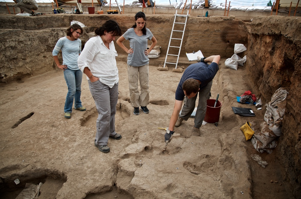 Excavating Last Traces of Building 77