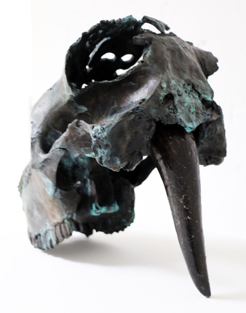 Stiletto bronze  2018 Bronze. Cow horn. © Tom Herck