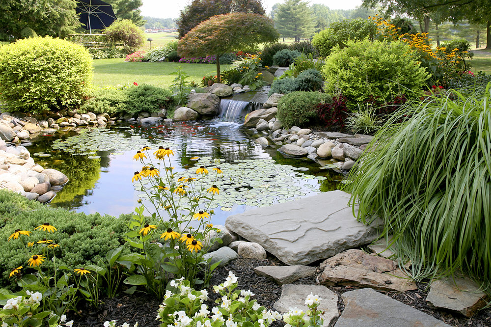 Click to view more    Water features & ponds    VIEW DESIGNS