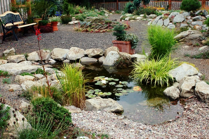 london-ontario-landscaper-pool-pond-design-garden-company-hunter-home-garden-08.jpg
