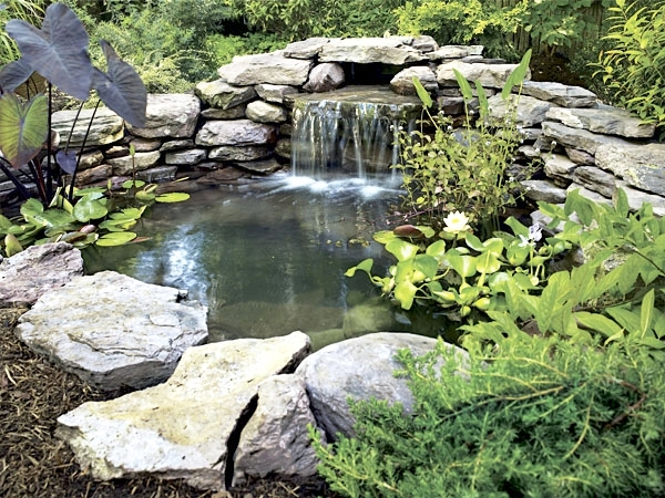 london-ontario-landscaper-pool-pond-design-garden-company-hunter-home-garden-15.jpg